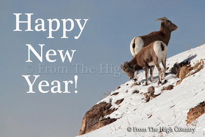 From The High Country Photography wishes you a Happy New Year!